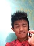 Michael luwang, 27 лет, Imphal