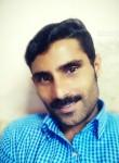 Shine baby, 34  , Cochin