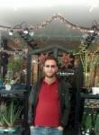 Mounir, 32  , Algiers