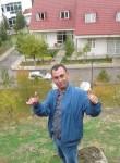Mikhail , 40  , Woodbridge