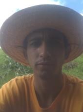 Marcelo, 26, Brazil, Curitiba