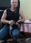Viktor, 72  , Samara