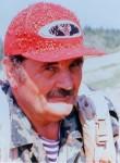 Aleks, 71  , Zheleznogorsk (Krasnoyarskiy)