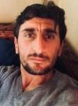 Mustafa, 34 года, Mecitözü