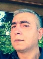Roman, 57, Belgium, Gent