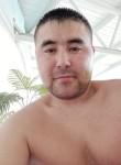 Armanio, 33  , Omsk