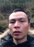 梦里未来, 67, Pucheng
