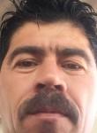 سنان, 43  , Kirkuk