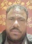 حسين كهرباء, 44  , Cairo