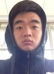 消炎药, 25  , Zaozhuang