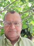 Domingos , 70  , Campos