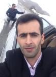 Rashid, 35, Orumiyeh