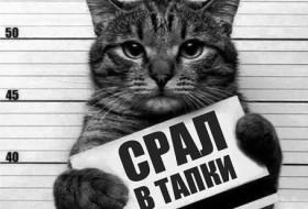 Ruslan, 37 - Miscellaneous