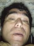 Pardo, 42  , Rengo