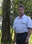 Vladimir, 62, Kursk