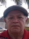 Coelha da Silva, 65  , Colinas