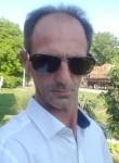 Zeljko, 42  , Belgrade