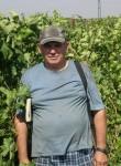 kesha, 51, Volgograd
