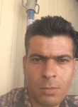 muotaz, 33 года, بيبلوس