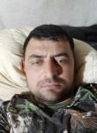 Mekan, 32, Vidnoye
