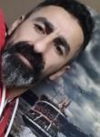 Feridun, 36, Istanbul