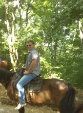 aleksandr, 43, Russia, Gelendzhik