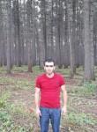 Narek, 19  , Rybnoye