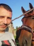Stas, 38  , Pushkino