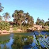allo, 35  , Sidi Merouane