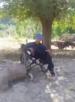 Erkin boy , 45  , Tashkent