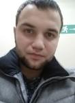 Andrey , 29  , Tomari