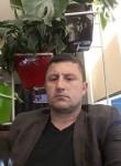 Bushi, 44  , Tirana