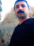 Mehmet, 31  , Gurun