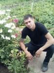 Eduard , 34  , Nizhnekamsk