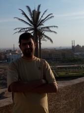 Feras, 37, Egypt, Cairo