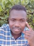 David , 23  , Khartoum