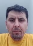 edis, 39  , Prizren