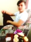 mustafa, 19 лет, Gediz
