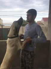 Ali, 26, Azerbaijan, Baku