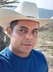 Joel , 31  , Monterrey