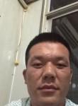 林夕, 37  , Tai an