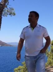 tercan, 45, Turkey, Istanbul