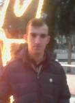 tehran, 29  , Sheki