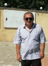 pitbul, 51, Georgia, Tbilisi