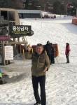 Chipolino, 50  , Seoul