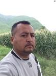 franciscgarcia, 39  , Huamuxtitlan