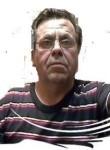 Goy, 69  , Yaroslavl