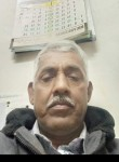 आदम, 40  , New Delhi