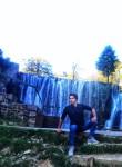 adana  cedar, 20  , Travnik
