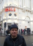steve, 63, London